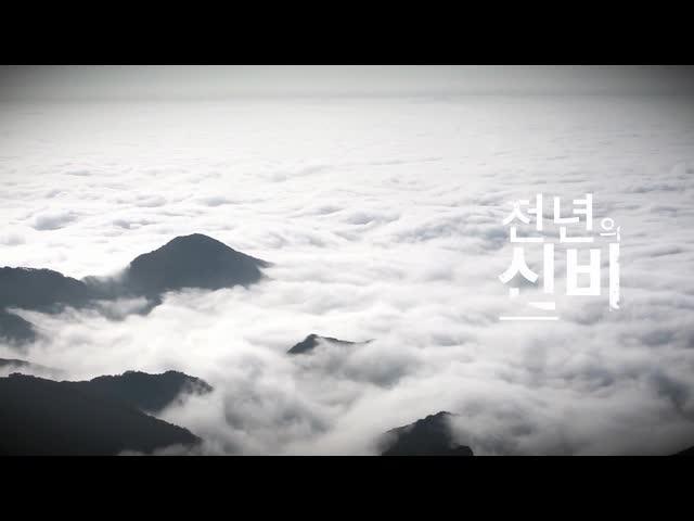 영주시 종합홍보영상